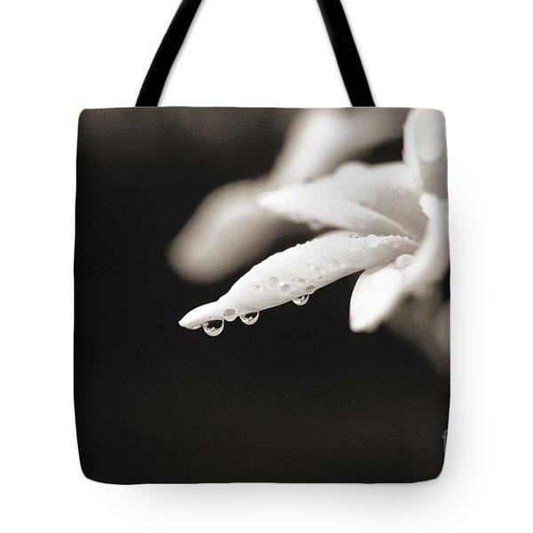 Plumeria Close-up Tote Bag by Reggie David - Printscapes