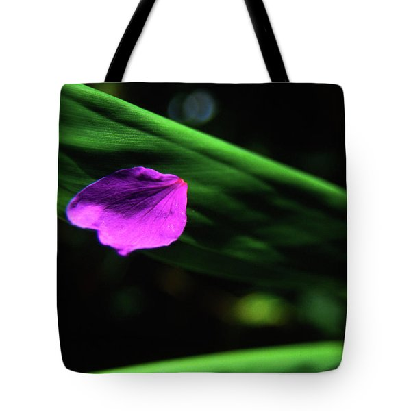 Plumeria Flower Petal On Plumeria Leaf- Kauai- Hawaii Tote Bag