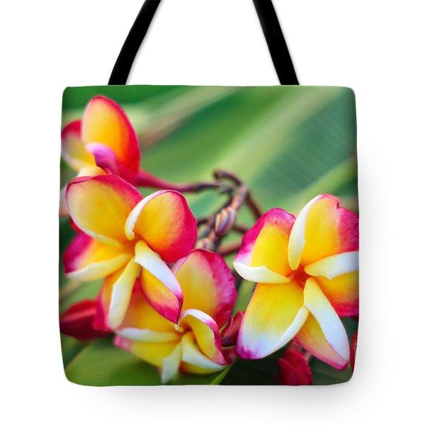 Plumeria Rainbow Tote Bag