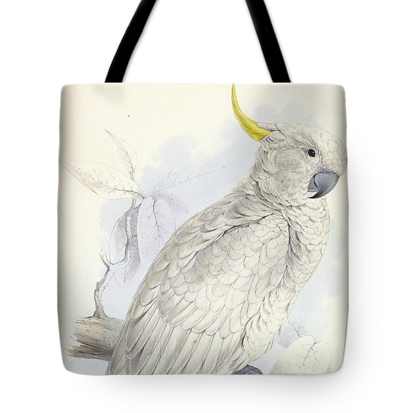 Plyctolophus Galeritus. Greater Sulphur-crested Cockatoo. Tote Bag