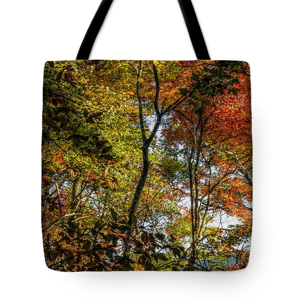 Tote Bag featuring the photograph Pockets Of Color Emerging by Barbara Bowen