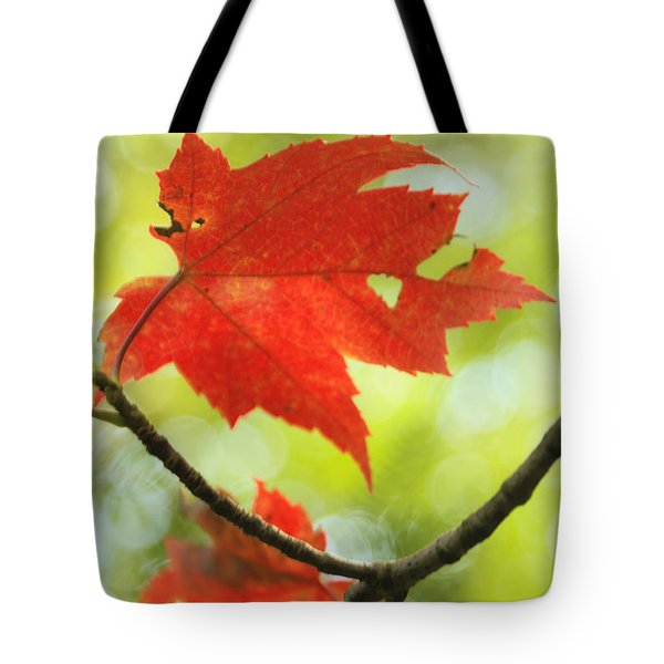 Tote Bag featuring the photograph Poesie D'automne  by Aimelle