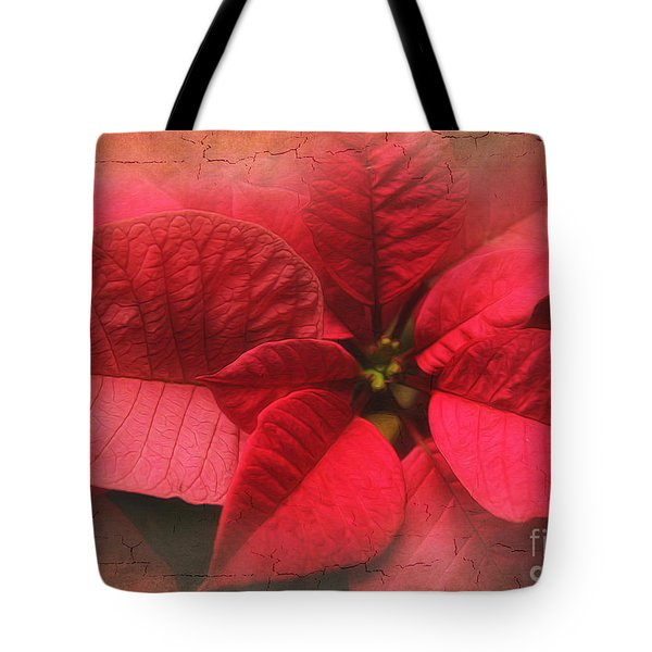 Poinsettia Tote Bag by Clare VanderVeen