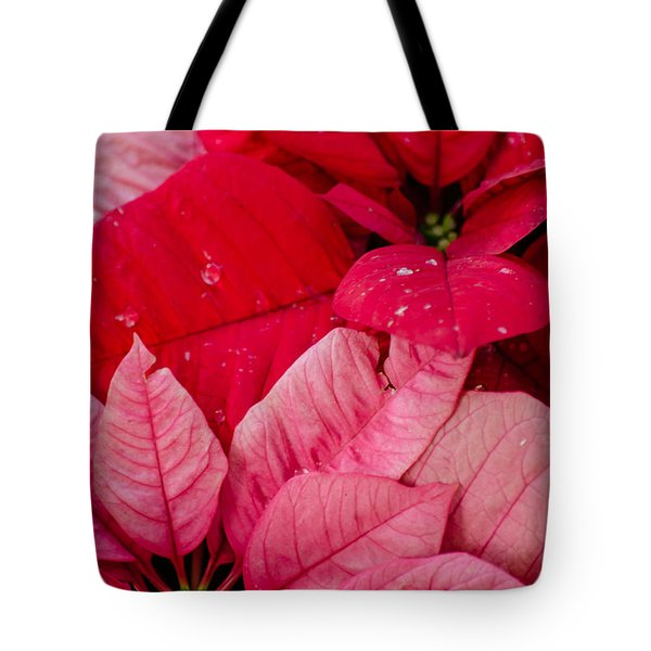 Poinsettias For The Holidays Tote Bag