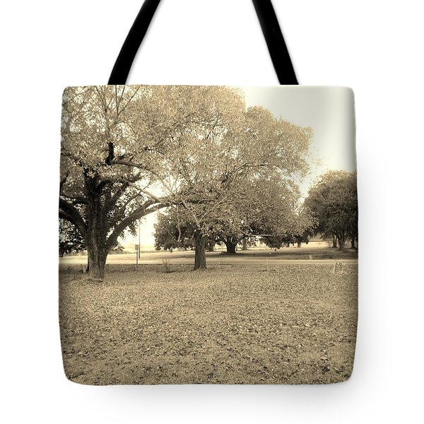 Point Blue  Tote Bag