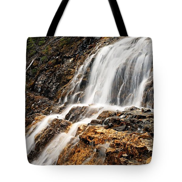 Point Lace Falls 1 Tote Bag by Larry Ricker