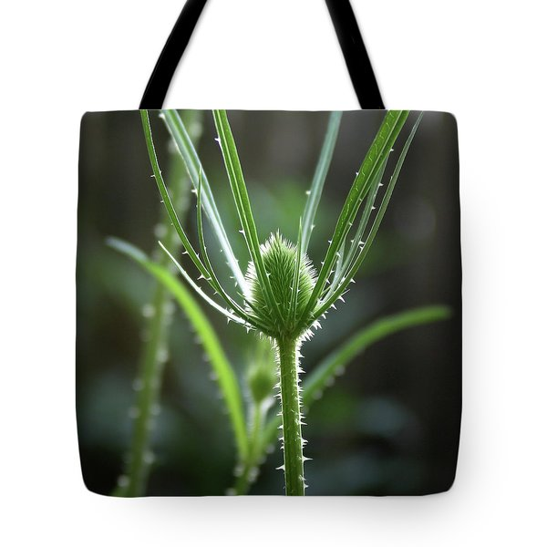 Points Of Light -  Tote Bag