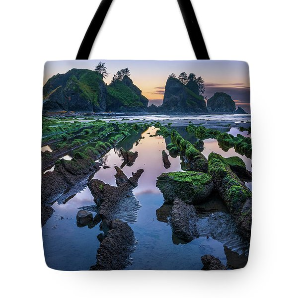Point Of The Arches Tote Bag