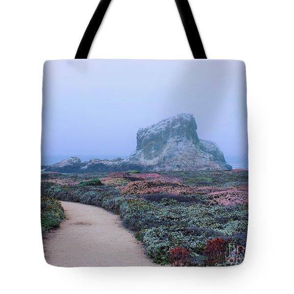 Point Piedras Blancas Tote Bag