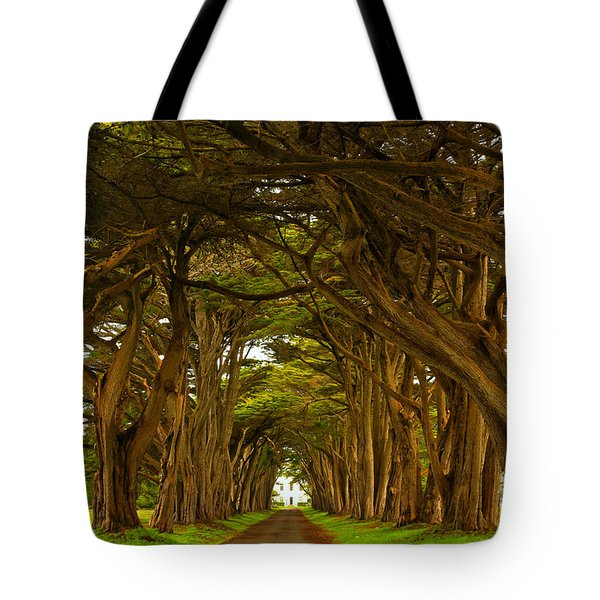 Point Reyes Cypress Tunnel Tote Bag
