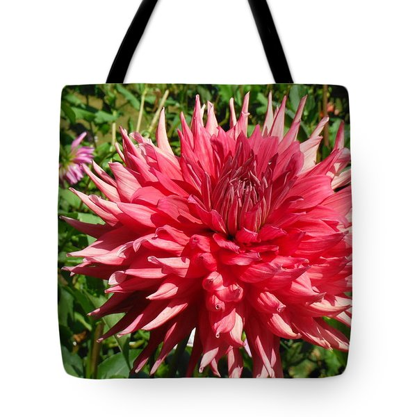 Pointed Pink Dahlia  Tote Bag