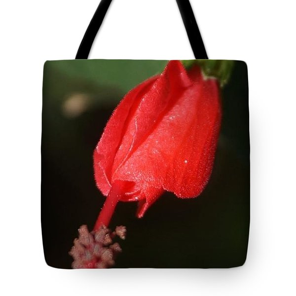 Tote Bag featuring the photograph Pointing Down by Cindy Charles Ouellette