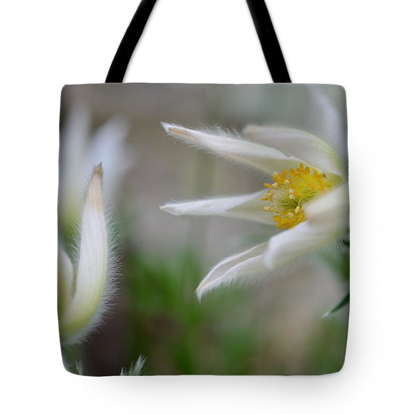 Points Tote Bag