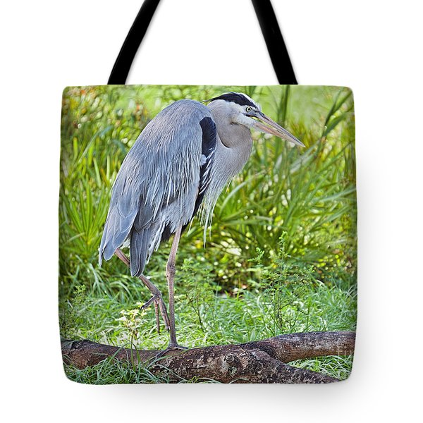 Poised And Focused Tote Bag