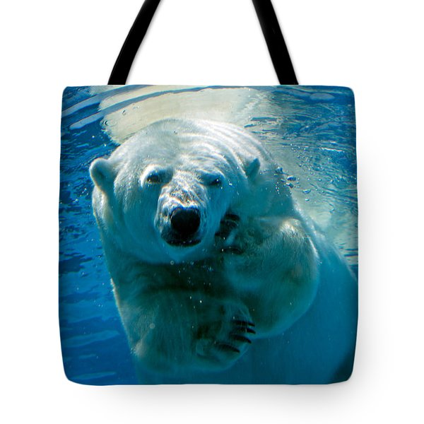 Tote Bag featuring the photograph Polar Bear Contemplating Dinner by John Haldane