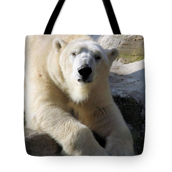 Polar Bear Tote Bag by Karol Livote
