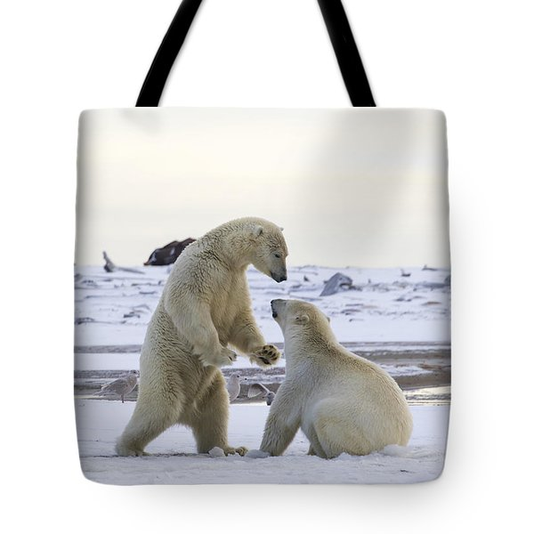 Polar Bear Play-fighting Tote Bag