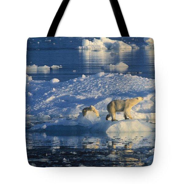 Polar Bear Ursus Maritimus Adult Tote Bag by Rinie Van Meurs