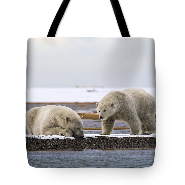 Polar Bear Zzzzzzz's Tote Bag