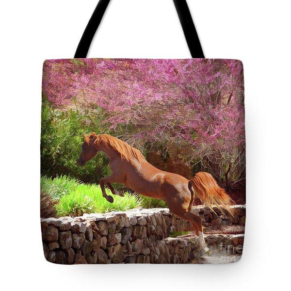 Polaris The Jumper Tote Bag