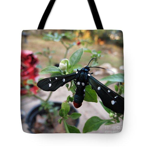 Polka Dot Wasp Moth Tote Bag