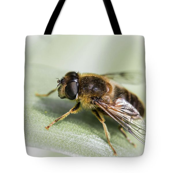 Pollen Dusted Tote Bag