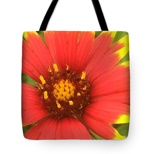 Pollinated Tote Bag