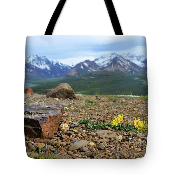 Tote Bag featuring the photograph Polychrome Pass, Denali by Zawhaus Photography