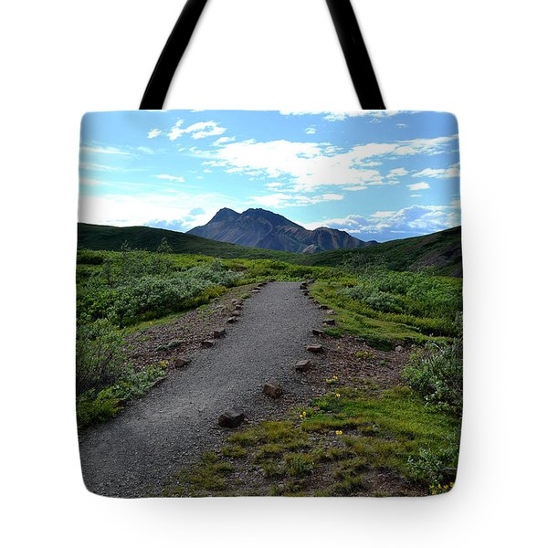 Tote Bag featuring the photograph Polychrome Pass Trail, Denali by Zawhaus Photography