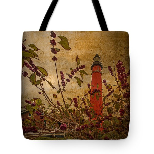 Ponce De Leon Inlet Lighthouse 6851 Tote Bag