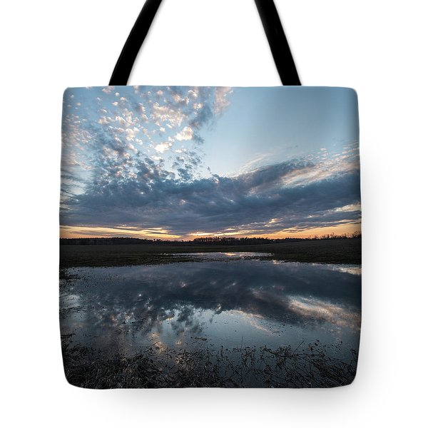 Pond And Sky Reflection3a Tote Bag