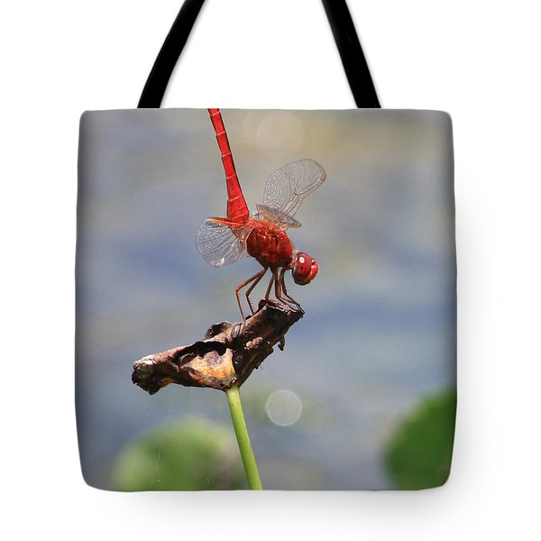 Pond Ballerina Tote Bag by Carol Groenen