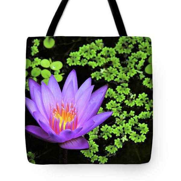 Pond Beauty Tote Bag