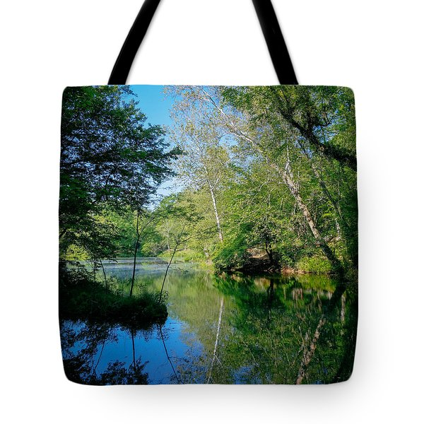 Pond With Sycamore Trees Tote Bag