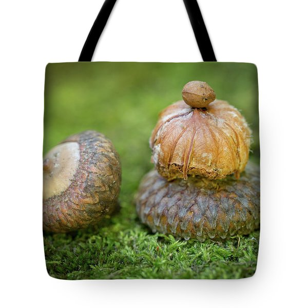 Tote Bag featuring the photograph Pondering With Nature by Dale Kincaid