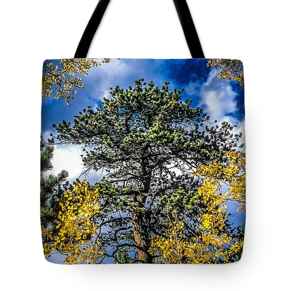 Ponderosa  Tree In The Aspens Of Fall Colorado Tote Bag by John Brink