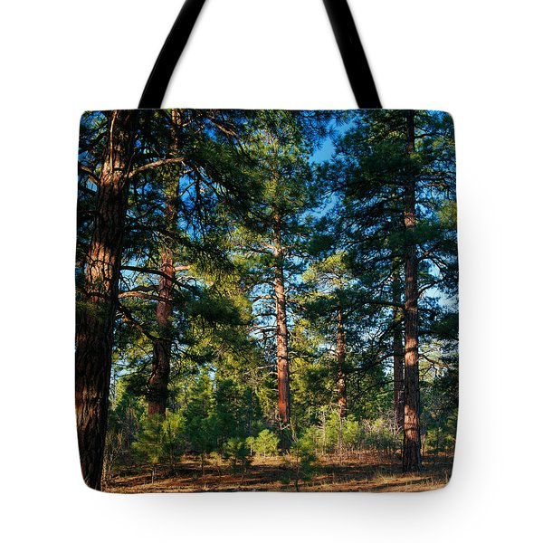 Ponderosa Pine Tree Forest, Kaibab Tote Bag