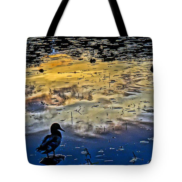 Pondscape Tote Bag by Jeffrey Friedkin
