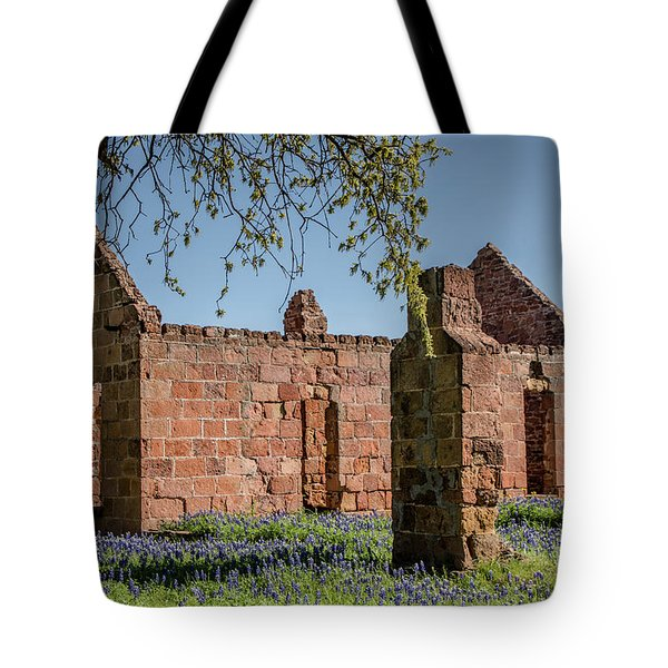 Tote Bag featuring the photograph Pontotoc Ruins by Teresa Wilson
