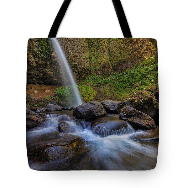 Ponytail Falls Tote Bag by David Gn