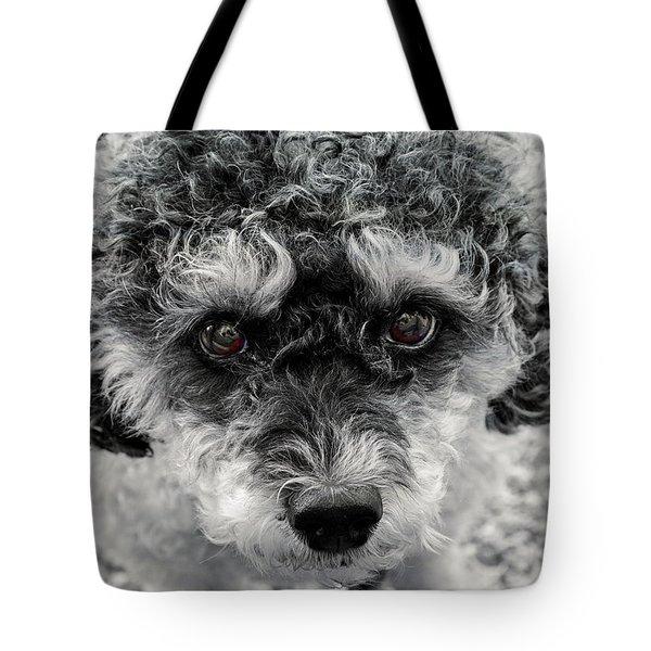 Poodle Eyes Tote Bag