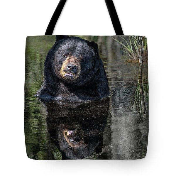 Pool Break Tote Bag
