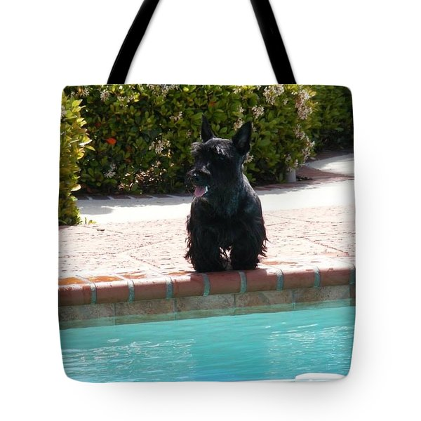 Pool Daze Tote Bag
