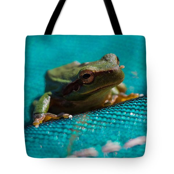 Tote Bag featuring the photograph Pool Frog by Richard Patmore