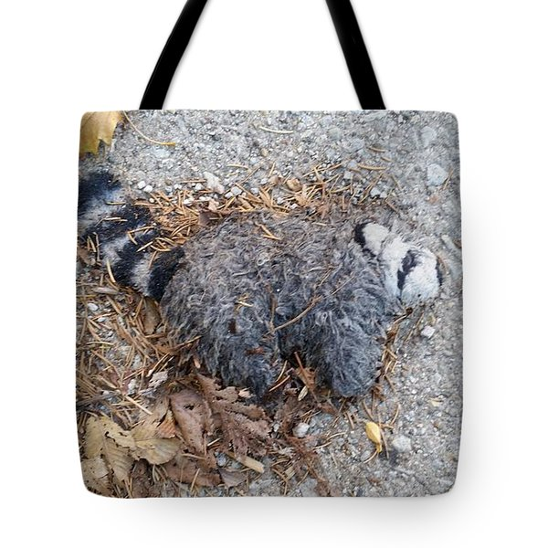 Poor Trash Panda Tote Bag