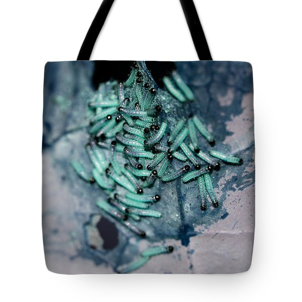 Tote Bag featuring the photograph Pop Macro No. 1 by Laura Melis