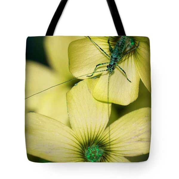 Tote Bag featuring the photograph Pop Macro No. 2 by Laura Melis
