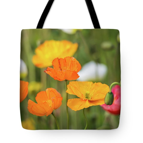 Tote Bag featuring the photograph  Poppies 1 by Werner Padarin