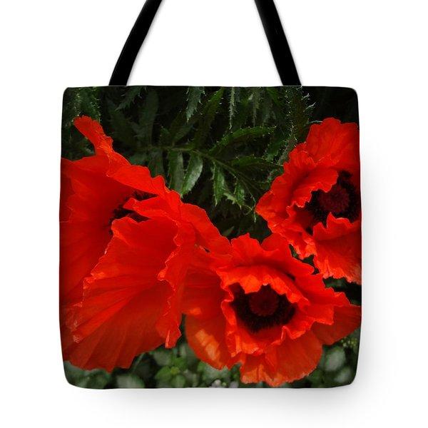 Poppies Allegro Tote Bag