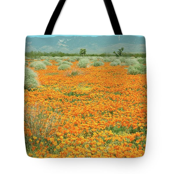 Tote Bag featuring the photograph Poppies For Ever - Poppy Fields Mohave Desert California by Ram Vasudev